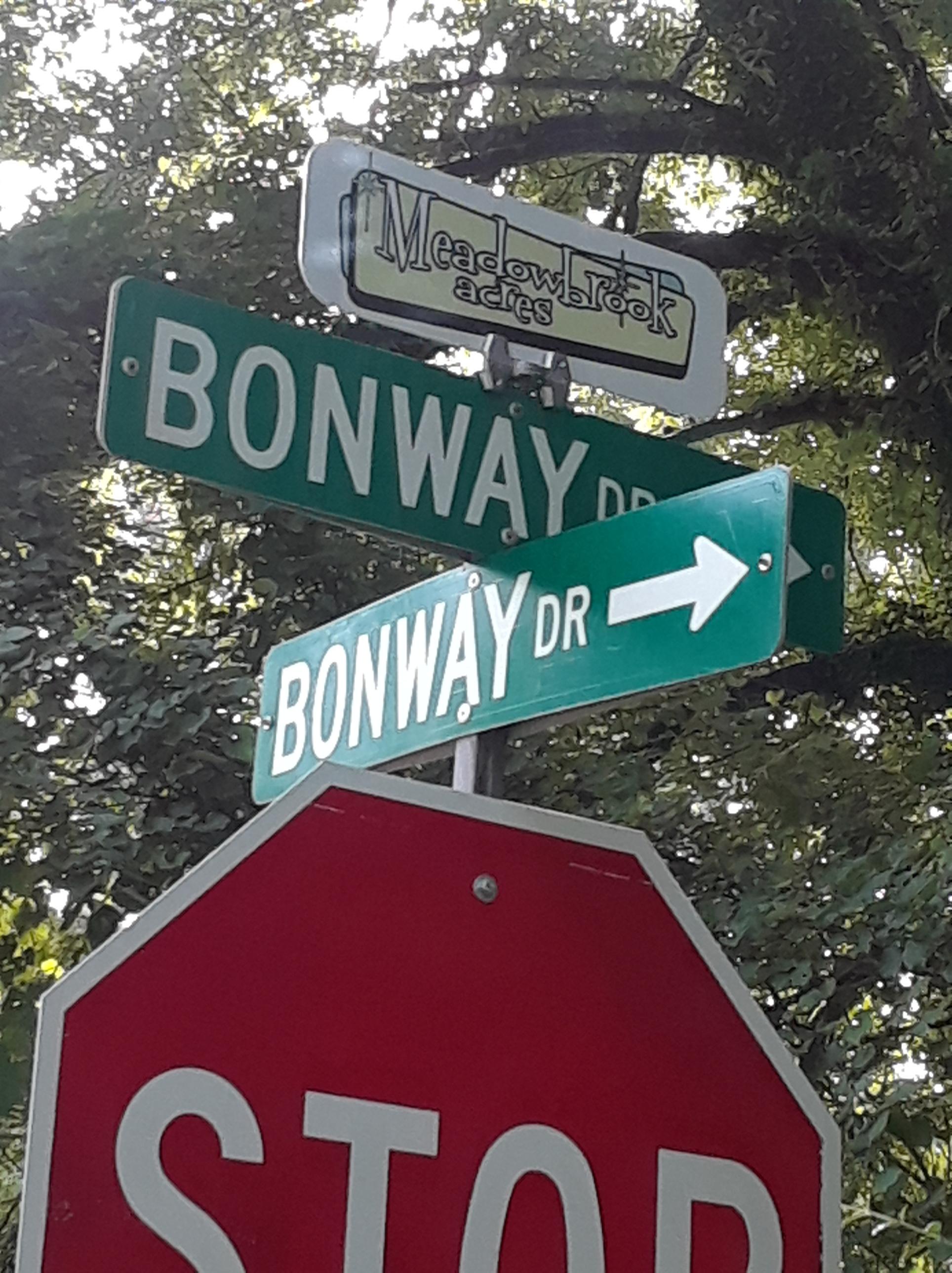 Decatur Neighborhood Meadowbrook Acres Street Sign Toppers Mid Century design