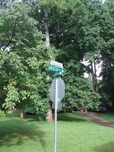 Decatur Neighborhood Meadowbrook Acres Street Sign Toppers Mid Century design